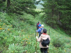 Hiking throughout the valley to learn flora, fauna, and navigation