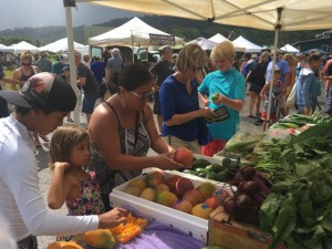 Shopping the farmer's market at Hanalei