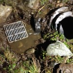After water diversion, the old, buried drain emerges