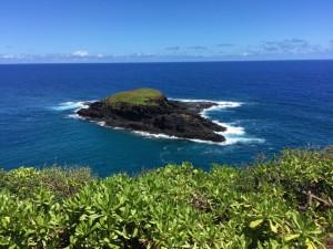 Maku'ae'ae island a bird refuge near the Kilauea Light house