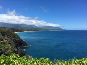 Kauai's incredible coastline